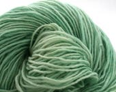 Valkill Hand Dyed DK weight NYS Wool 252 yds 4oz Jadeite