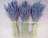 Custom Wedding Flowers for Rachael Lavender  Bridesmaids Bouquets Boutonnieres Bulk Lavender