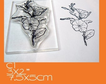 C1 Morning Glory Clear Rubber Stamp Mounted
