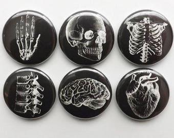 Anatomy Button Pins badges black white human anatomical heart graduation doctor male nurse stocking stuffer magnet set novelty gift goth