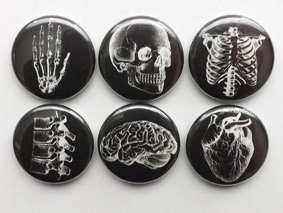 Anatomy Button Pins badges black white human anatomical heart graduation doctor male nurse stocking stuffer magnet set novelty gift goth