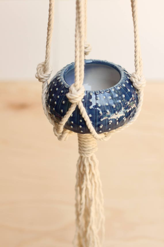 mini hanging planter with macrame