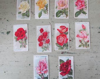 Smell The Roses -  Vintage Cigarette Cards of Roses - Set of 10 - Wills's. - 1930's - Set #5