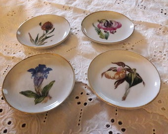 Enesco Botanical Coasters, Set of Four, Vintage, Iris, lady slipper flower, thistle, Hybiscus