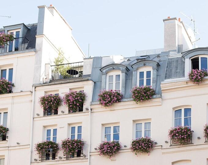 Paris Photography, Balconies on St Germain, Parisian Rooftops, Pink Flower Boxes, Living Room Art, Paris Balcony, Rebecca Plotnick