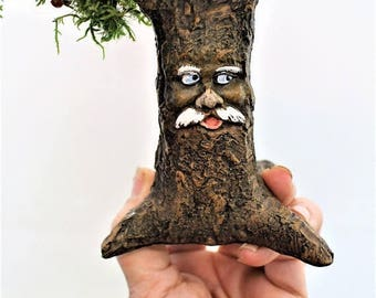 Save25% Moss Tree-Fairy Garden Tree, OOAK mushroom tree, Miniature garden tree with face, Mushroom tree-Hand painted-Preserved fern moss