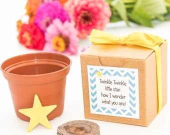 Twinkle Twinkle Little Star Baby Shower Favor Flower Garden Growing Kit for Boy Girl or Gender Neutral Baby Showers - Custom Orders Welcome