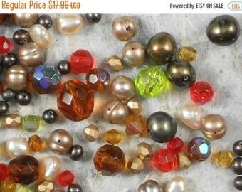 ON SALE Crystal Beads & Pearl Mix Warm Tones Designer Colorwave (301)