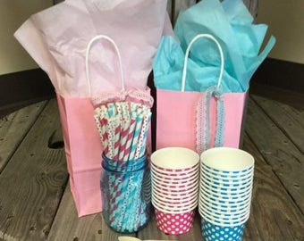 25% Off Summer Sale FREE SHIPPING! - GeNDeR ReVEaL Party Pack - Ice Cream Cups - Paper Straws - Spoons - 30 pack