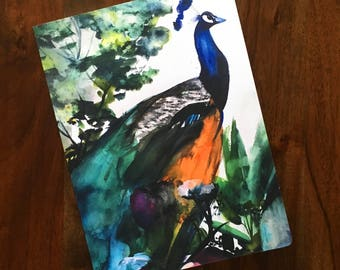 Peacock Garden Notebook - Unlined Sketchbook - Large Journal - Watercolor Illustration - Art Book - Daily Morning Pages