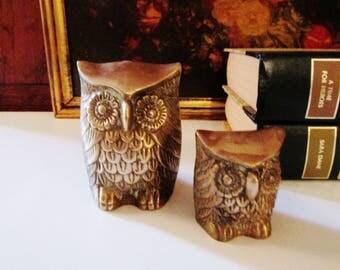 Vintage Pair of Brass Owls, Brass Figurines, Hollywood Regency Brass, Bookshelf Decor, Farmhouse Chic, Wise Owls