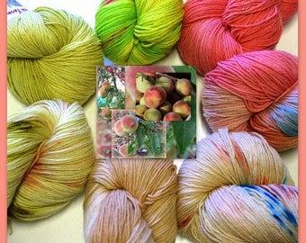 Sock Yarn Peaches family