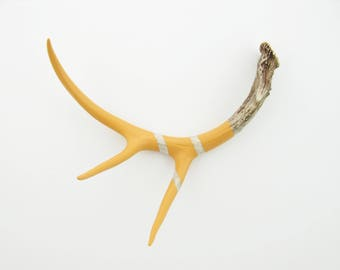 Painted Antler - LARGE - Orange Monochromatic - Taxidermy and Curiosities