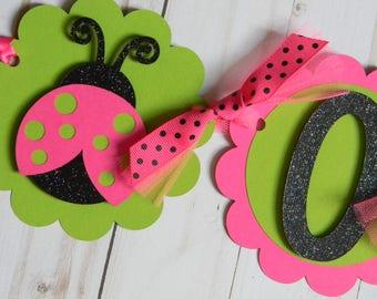 Ladybug High Chair Banner, Ladybug Pink and Green Banner, Ladybug First Birthday, Ladybug Banner, Ladybug ONE Banner, Ladybug Party Decor