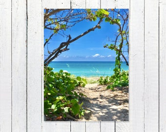 Seascape Art Coastal Decor | Nautical Decor Print | Coastal Photography Print | Blue Sky Turquoise Ocean Greenery Art | Beach House Decor