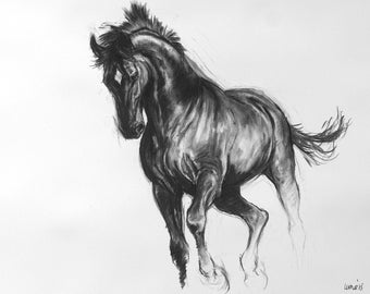 Equine art horse art LE mounted art print horse gift horse lover gift wall art 'Black II' from an original charcoal sketch drawing