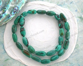 Turquoise Beads, 23 ~ 10 to 17mm Genuine Chinese Turquoise Beads, Semi Precious Stone Beads, Real Turquoise Beads SEM-019-4