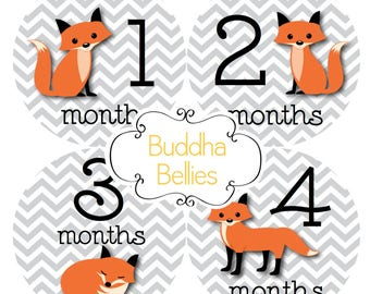 READY TO SHIP Fox Baby Monthly Stickers Fox Stickers Month Baby Stickers Fox Baby Shower Red Fox Month Baby Stickers Milestone Baby Decals