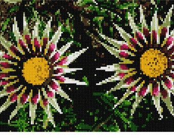 Needlepoint Canvas: Gazania Side By Side