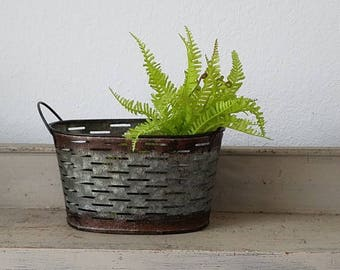 Galvanized Olive Basket with Faux Fern Plant  Farmhouse