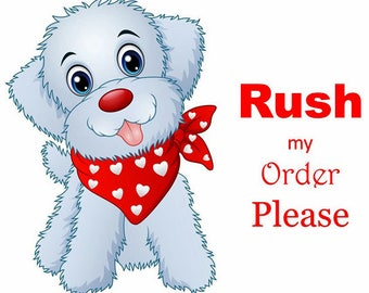 Rush My Order Please - 3 - 10 Days - First Class and Priority Mail Upgrade