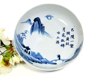 Antique Japanese Hand Painted Sometsuke Serving Bowl Blue and White