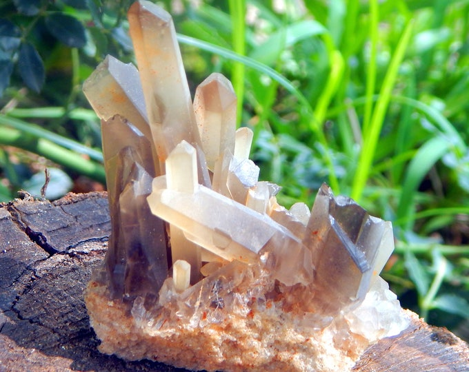 Unique Tibetan Smoky Quartz cluster many terminations on matrix - Reiki Wicca Pagan Geology gemstone specimen