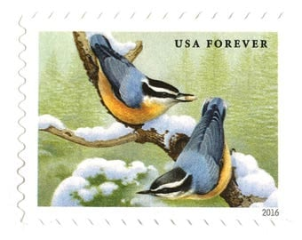 10 Forever Evergreen Postage Stamps for Mailing Invitations // Snowy Evergreen and Forest Songbirds // Pine Tree Forever Stamps for Mailing