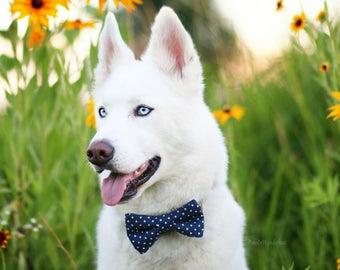 Dog Bow Tie, Dog Bowtie, Navy Polka Dot Bow Tie, Polka Dot Dog Bow Tie - Dog Bow Tie Only, Collar NOT Included
