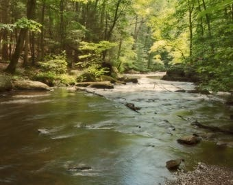 Woodland Photography, Forest Photography, Landscape Photos, Trees, Nature Photography, Rivers and Streams, Outdoor Photos