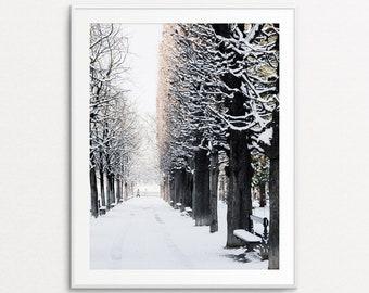Paris Luxembourg Gardens, Paris Snowfall, Paris Photography, Paris Print, Paris Bedroom Decor, Paris Home Decor, Paris Decor, Paris Wall Art