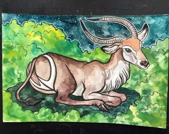 Waterbuck Original 6x9 Gouache Painting