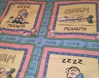 Peanuts Cozy Time Play Time Linus & Snoopy Fabric Pillow Panel