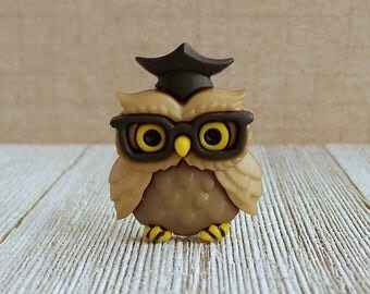 Owl - Wisdom - Knowledge - Graduation - Wise - Graduate - Professor - Lapel Pin