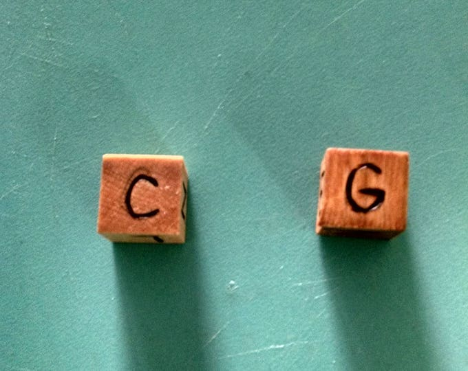 Wood Cut Dice - Random Alignment Dice (D20/Dungeons and Dragons)