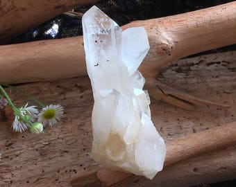 Raw quartz crystal gemstone point for reiki and crystal healing, space clearing, energy healing
