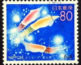 Colorful Squids, Japan -Handmade Framed Postage Stamp Art 22556AM