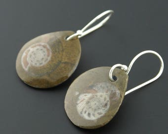 Sterling Silver Fossil Nautilus Earrings