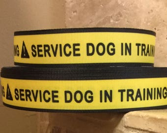 5 YDS Service Dog In Training Ribbon