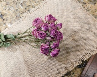 Dried Roses, Roses, Pink dried roses,