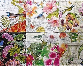 Set of 10,  Assorted Paper Cocktail Napkins for Decoupage and Paper Crafts, Birds, Floral