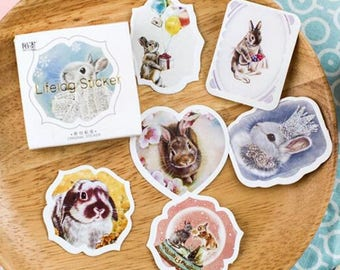 Rabbit - Sticker with rabbits, for decoration, scrap 45 stickers, Easter...