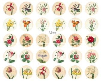189 # plants and flowers digital 54 Images/designs for 12mm round cabochon