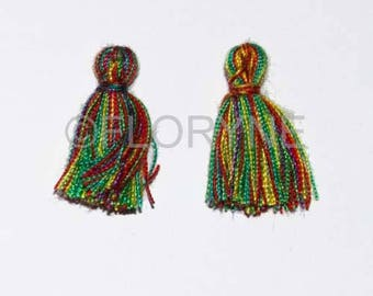 2 small 10 X 20Mm 6 multicolored yarn tassel