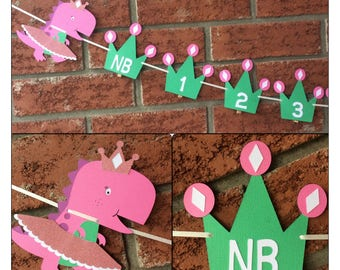 Dinosaurs 1st Birthday photo banner - Dinosaur Photo banner - NB -12 month pictures  - Crowns - Tutus first year photo banner