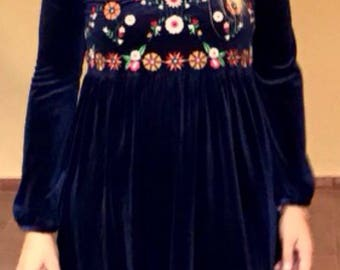 Dress embroidered velvet