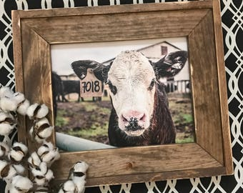 Framed Cow Photo (finished size 20x17) / farmhouse style / rustic