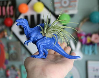 Custom Dinosaur Planter with Air Plant Included Room Decor- Dorm Room Decor- Home Decor- Birthday Gift- Party Favor- Desk Decor