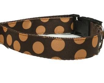 Dog Collar, Circles Dots Orange on Brown