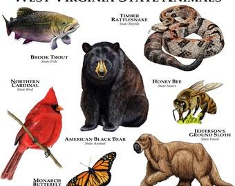 West Virginia State Animals